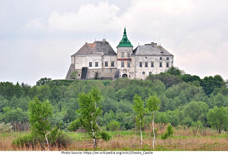 Olesko Castle picture