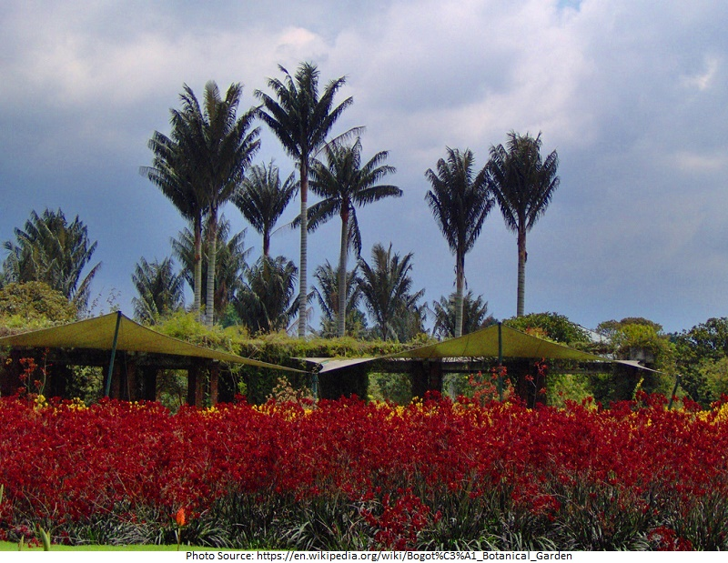 tourist attractions in Bogota Botanical Garden