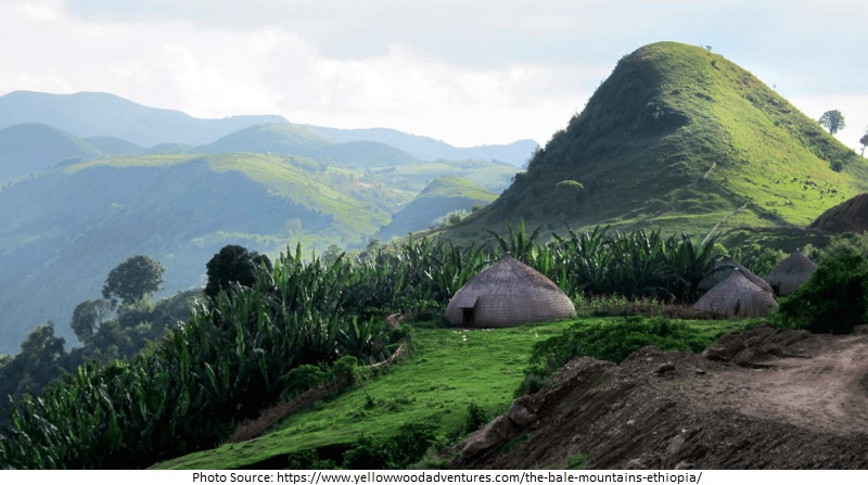 tourist attractions in Bale Mountains