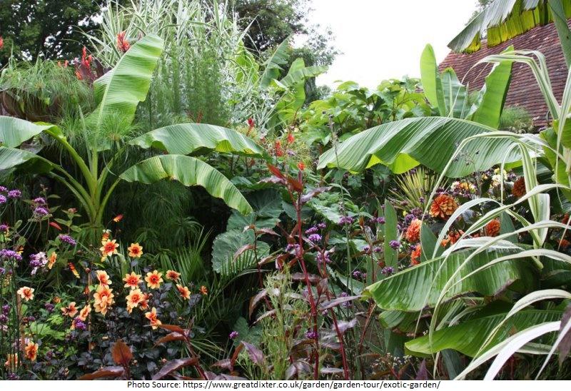 tourist attractions in Exotic Garden
