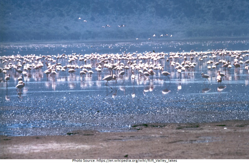 tourist attractions in Rift Valley Lakes