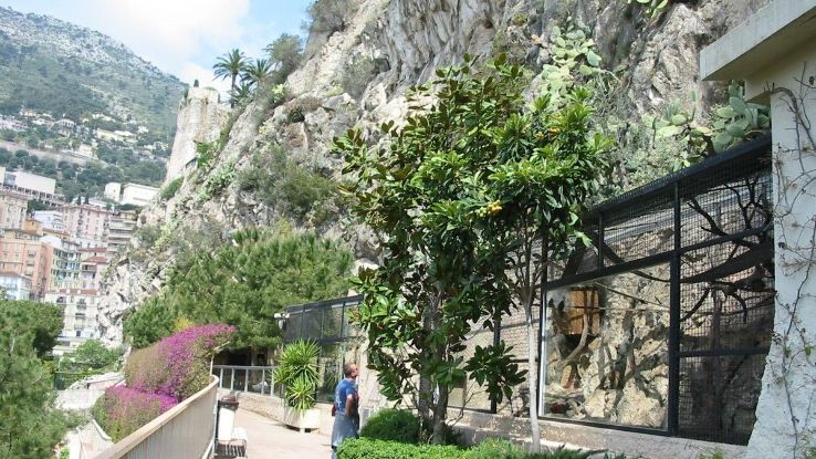 tourist attractions in The Zoological Gardens of Monaco